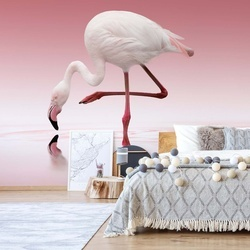 Flamingo Photo Wallpaper Mural