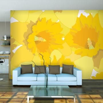 Fototapet - Daffodils