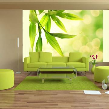 Fototapet - Green bamboo leaves