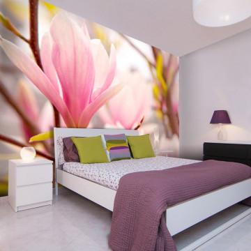 Fototapet - Magnolia flower bloosom