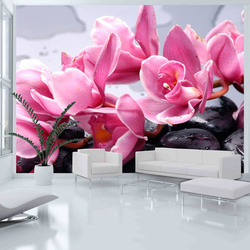 Fototapet - Orchid flowers with zen stones