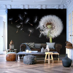 Fototapet - Wind and dandelion