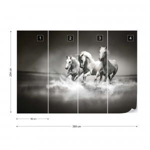 Horses Black And White Photo Wallpaper Wall Mural