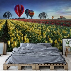 Hot Air Balloons Over Tulip Field Photo Wallpaper Mural