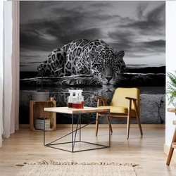 Leopard Reflection Black And White Photo Wallpaper Wall Mural