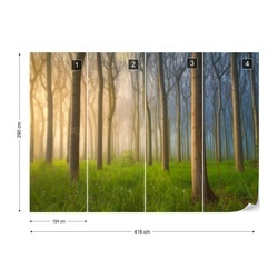 Misty Morning Photo Wallpaper Mural