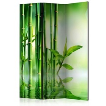 Paravan - Bamboo Grove [Room Dividers]