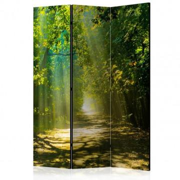Paravan - Road in Sunlight [Room Dividers]