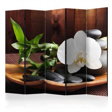Paravan - temple zen II [Room Dividers]