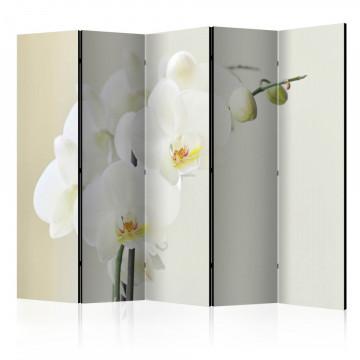 Paravan - White orchid II [Room Dividers]
