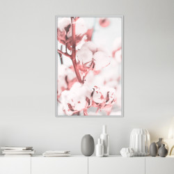 Poster - Cotton Flowers