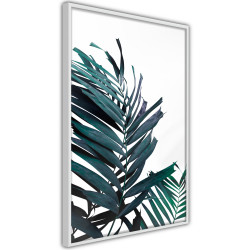 Poster - Evergreen Palm Leaves