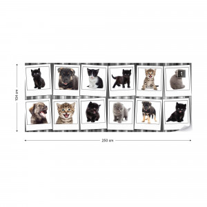 Puppies And Kittens Photo Wallpaper Wall Mural