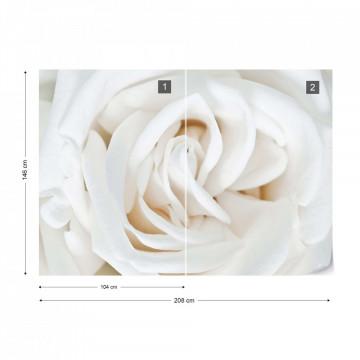 Soft White Rose Photo Wallpaper Wall Mural