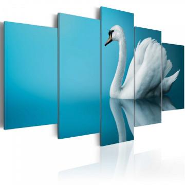 Tablou - A swan in blue
