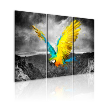 Tablou - Bird-of-paradise
