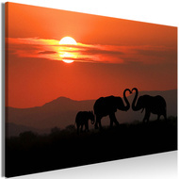 Tablou - Elephants in Love (1 Part) Wide