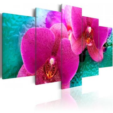 Tablou - Exotic orchids