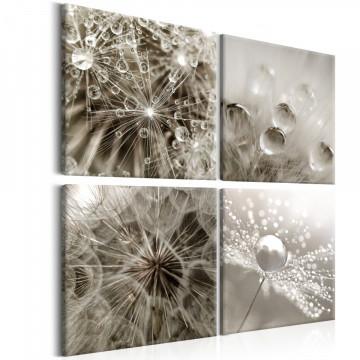 Tablou - Grey Dandelion