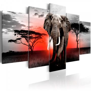 Tablou - Lonely Elephant