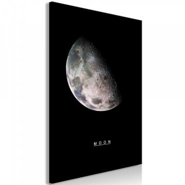 Tablou - Moon (1 Part) Vertical
