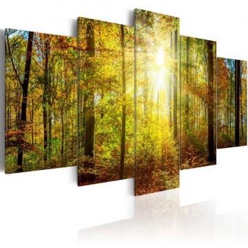 Tablou - Mystical Forest