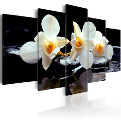 Tablou - Orchids with orange accent