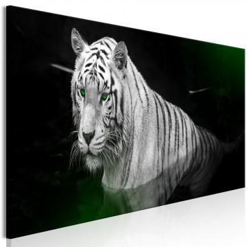 Tablou - Shining Tiger (1 Part) Green Narrow