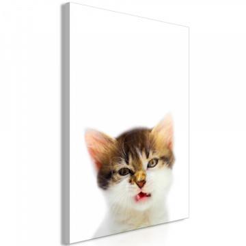 Tablou - Vexed Cat (1 Part) Vertical