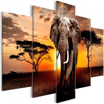 Tablou - Wandering Elephant (5 Parts) Wide