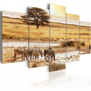Tablou - Zebras on a savannah