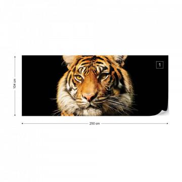 Tiger Photo Wallpaper Wall Mural
