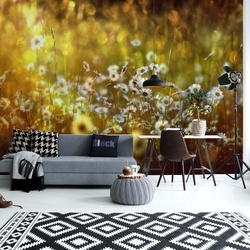 Wonderland Photo Wallpaper Mural