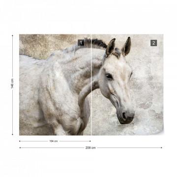 Beautiful White Horse Photo Wallpaper Wall Mural