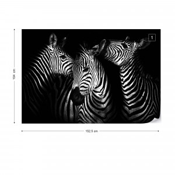 Black And White Zebras Photo Wallpaper Wall Mural