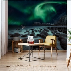 Dragon's Fly Photo Wallpaper Mural