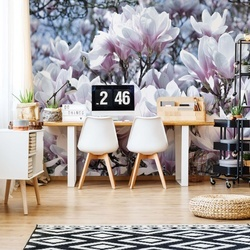 Flowers Magnolia Photo Wallpaper Wall Mural