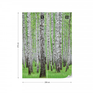 Forest Birch Trees Woods Photo Wallpaper Wall Mural