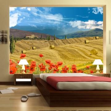 Fototapet - Autumn landscape