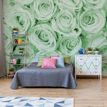 Fototapet - Buchet de Trandafiri – Verde