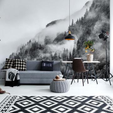Fototapet - Ceață peste Pădure – Alb-Negru