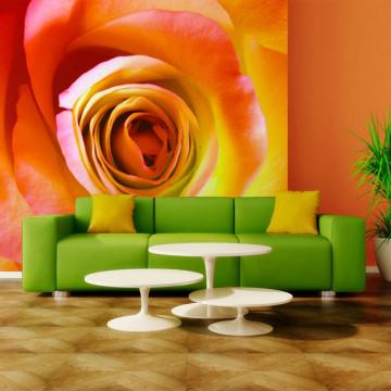 Fototapet - Desert rose