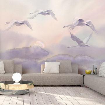Fototapet - Flying Swans