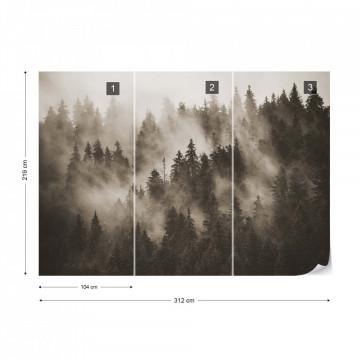 Fototapet - Pădure de Brazi în Ceață – Sepia