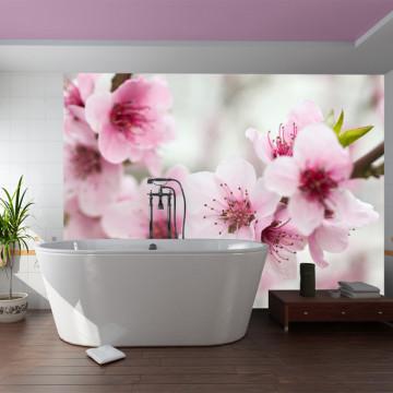Fototapet - Spring, blooming tree - pink flowers