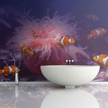 Fototapet - Tropical fishes
