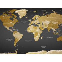 Fototapet XXL - World Map: Modern Geography II