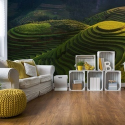 Gold Rice Terrace Photo Wallpaper Mural