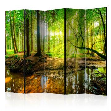 Paravan - Forest Stream II [Room Dividers]