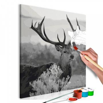 Pictatul pentru recreere - Grey Wildness